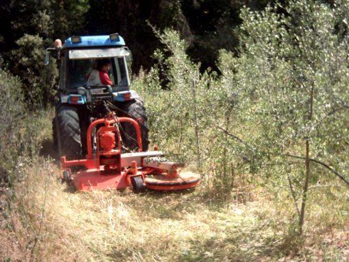 DD ecological brushcutter with sensor