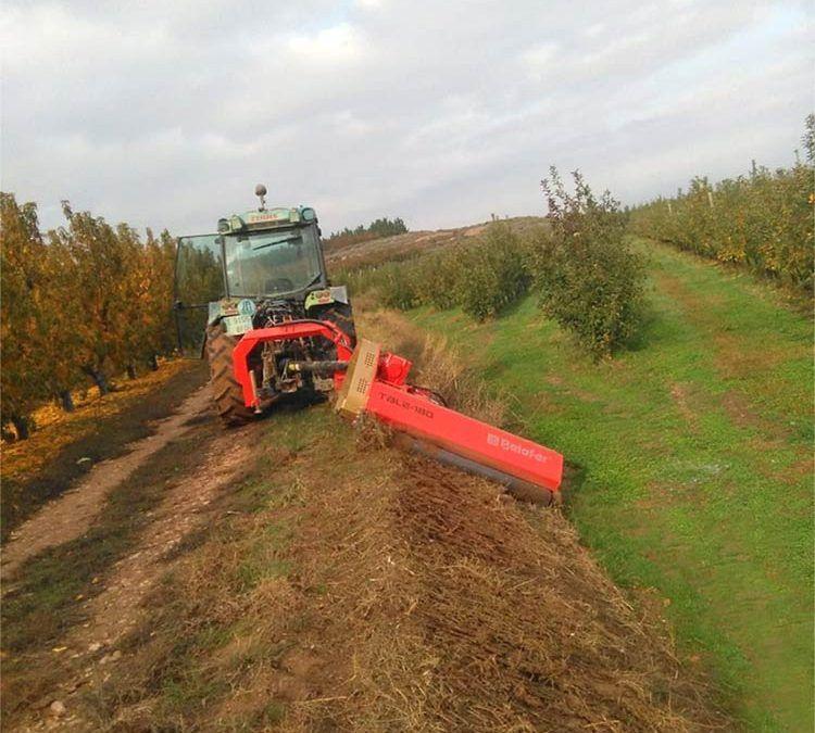 Trituradora TBL-L. Maquinaria agrícola Belafer